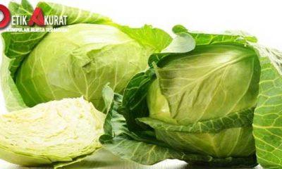 sayur-kol-kaya-nutrisi-dan-zat-untuk-cegah-kanker