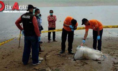 polisi-pelaku-pembunuh-mayat-dalam-karung-yang-dibuang-ke-laut