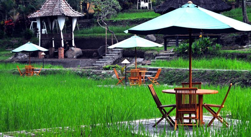 6. Paddy City Resort